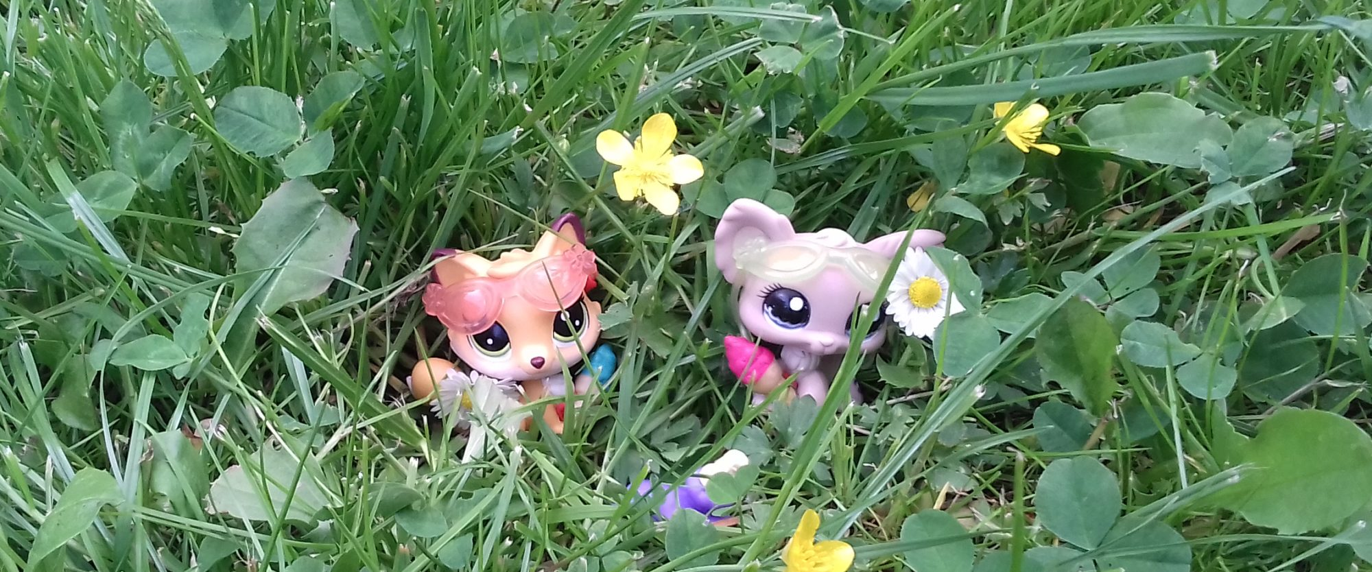 Goblinka LPS Littlest Pet Shop
